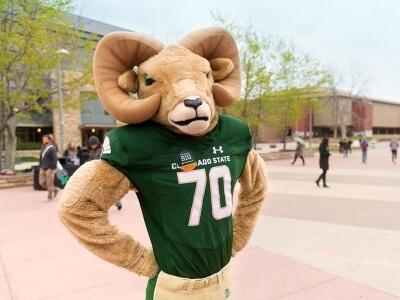 Colorado State University Mascot